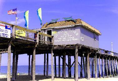 Oc fishing pier homepage for Ocean city md fishing pier